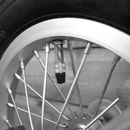 gecko-folding-bike