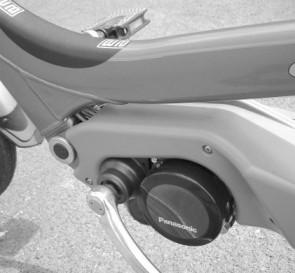 Giant Revive Spirit Electric Bike